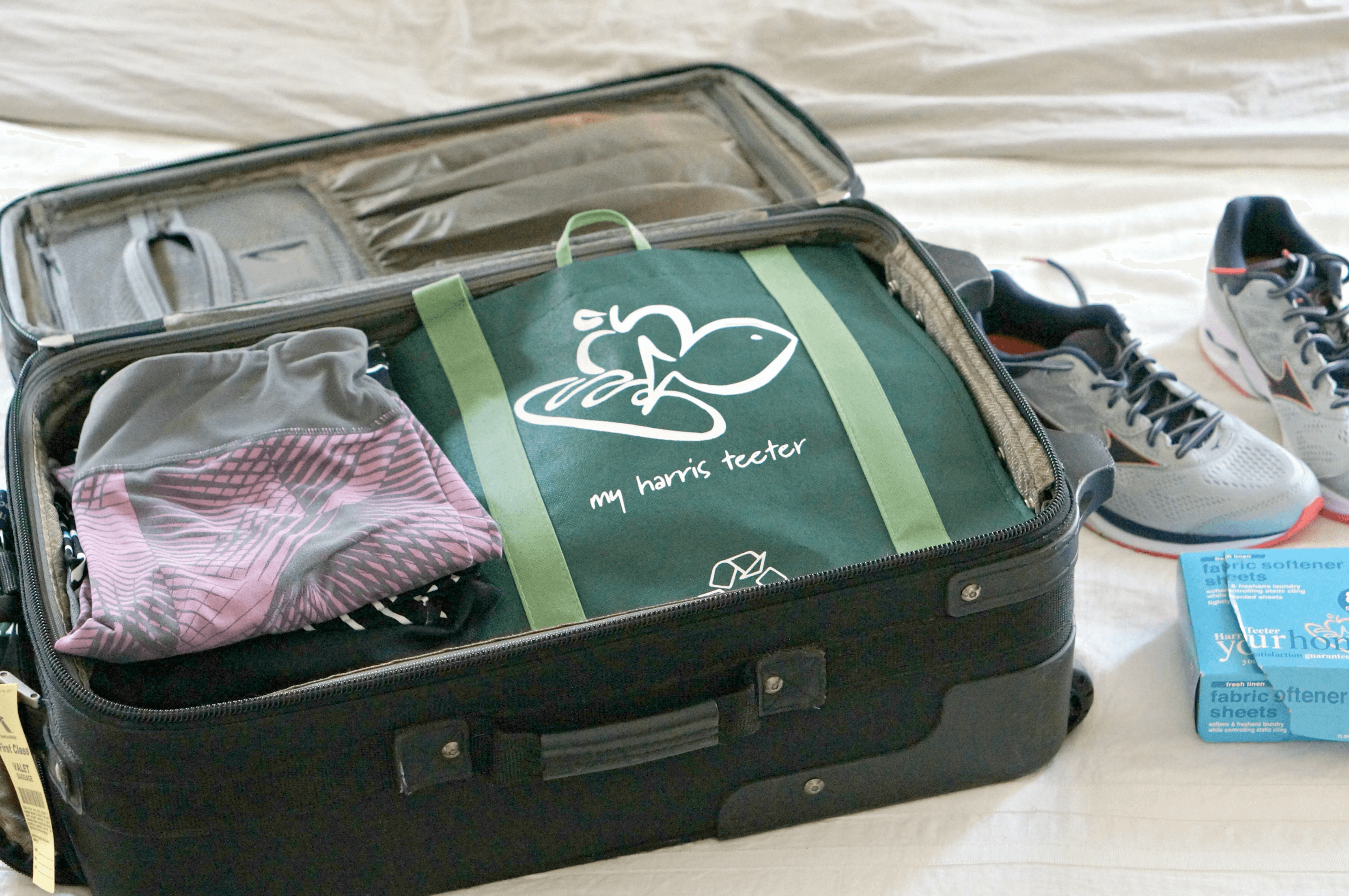 Suitcase Shoe Bag