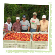 Sunny Valley - Jersey Fruit Cooperative